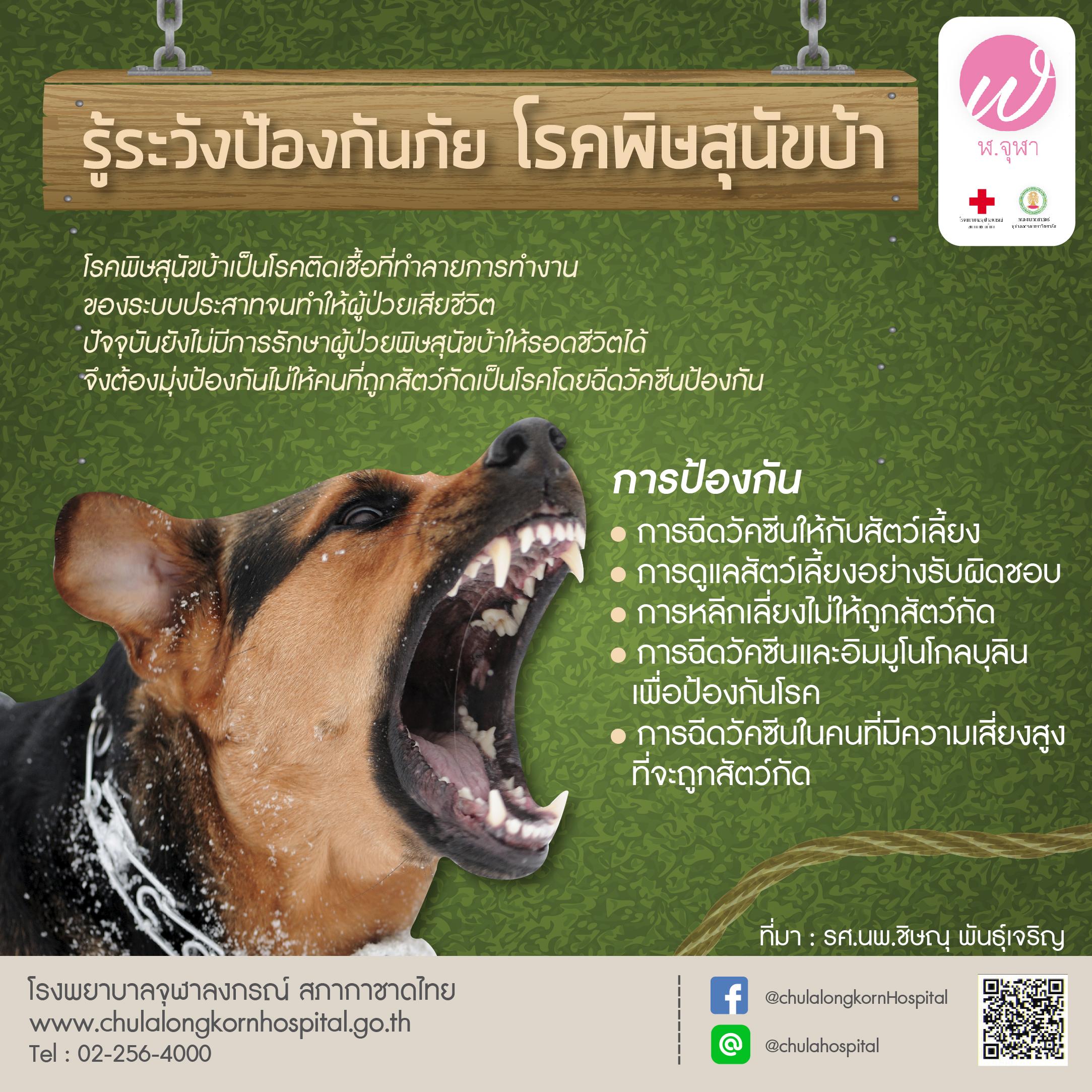 รู้ระวังป้องกันภัย โรคพิษสุนัขบ้า