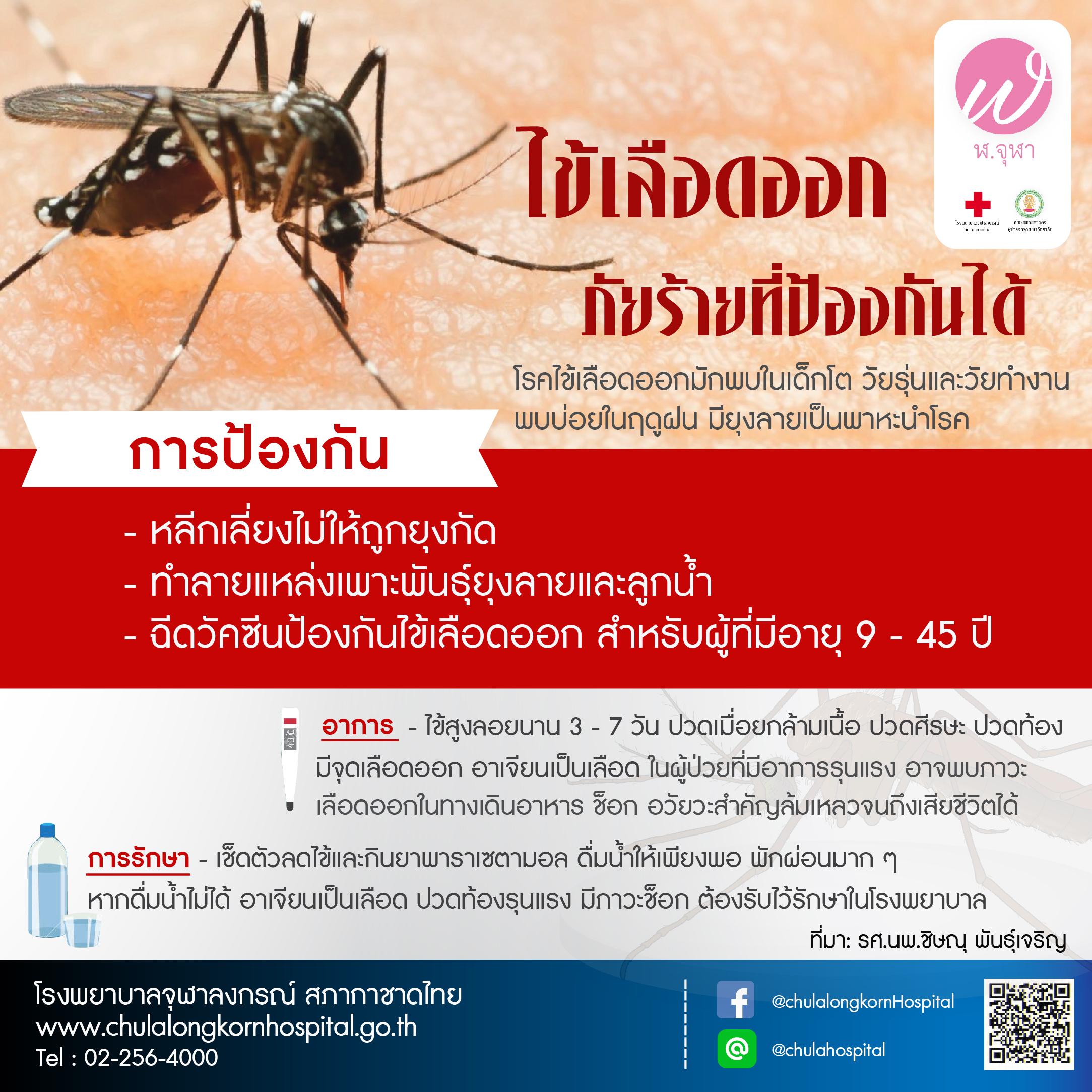 ไข้เลือดออก ภัยร้ายที่ป้องกันได้