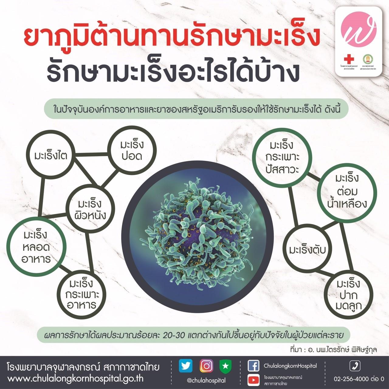 ยาภูมิต้านทานรักษามะเร็ง รักษามะเร็งอะไรบ้าง