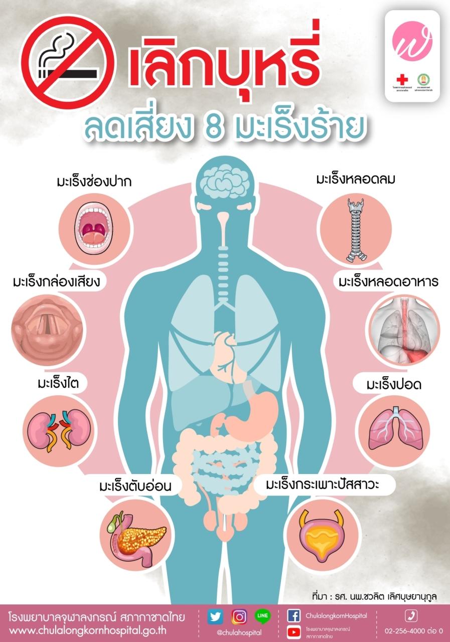 ลดบุหรี่ ลดเสี่ยง 8 มะเร็งร้าย