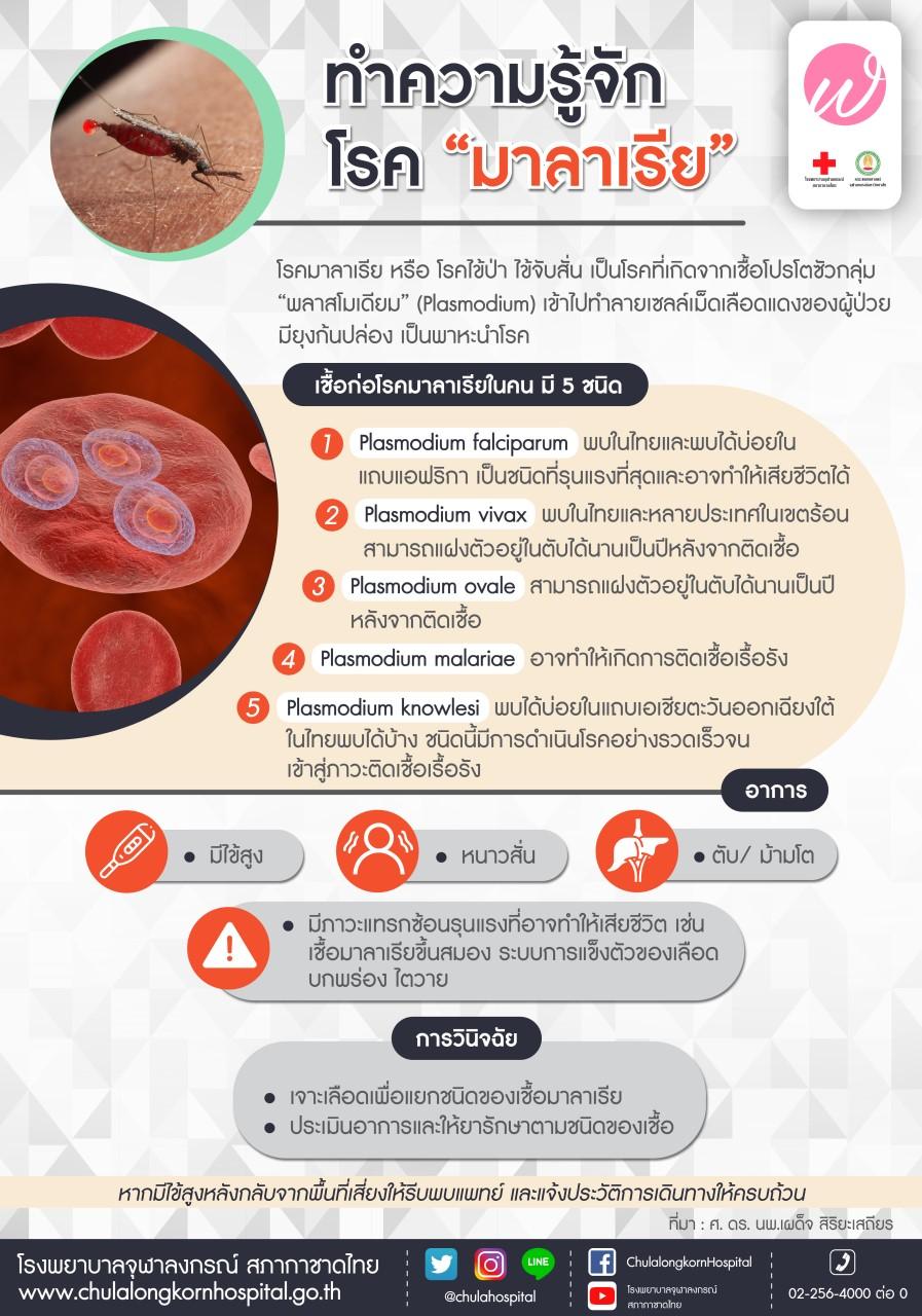 ทำความรู้จักโรคมาลาเรีย