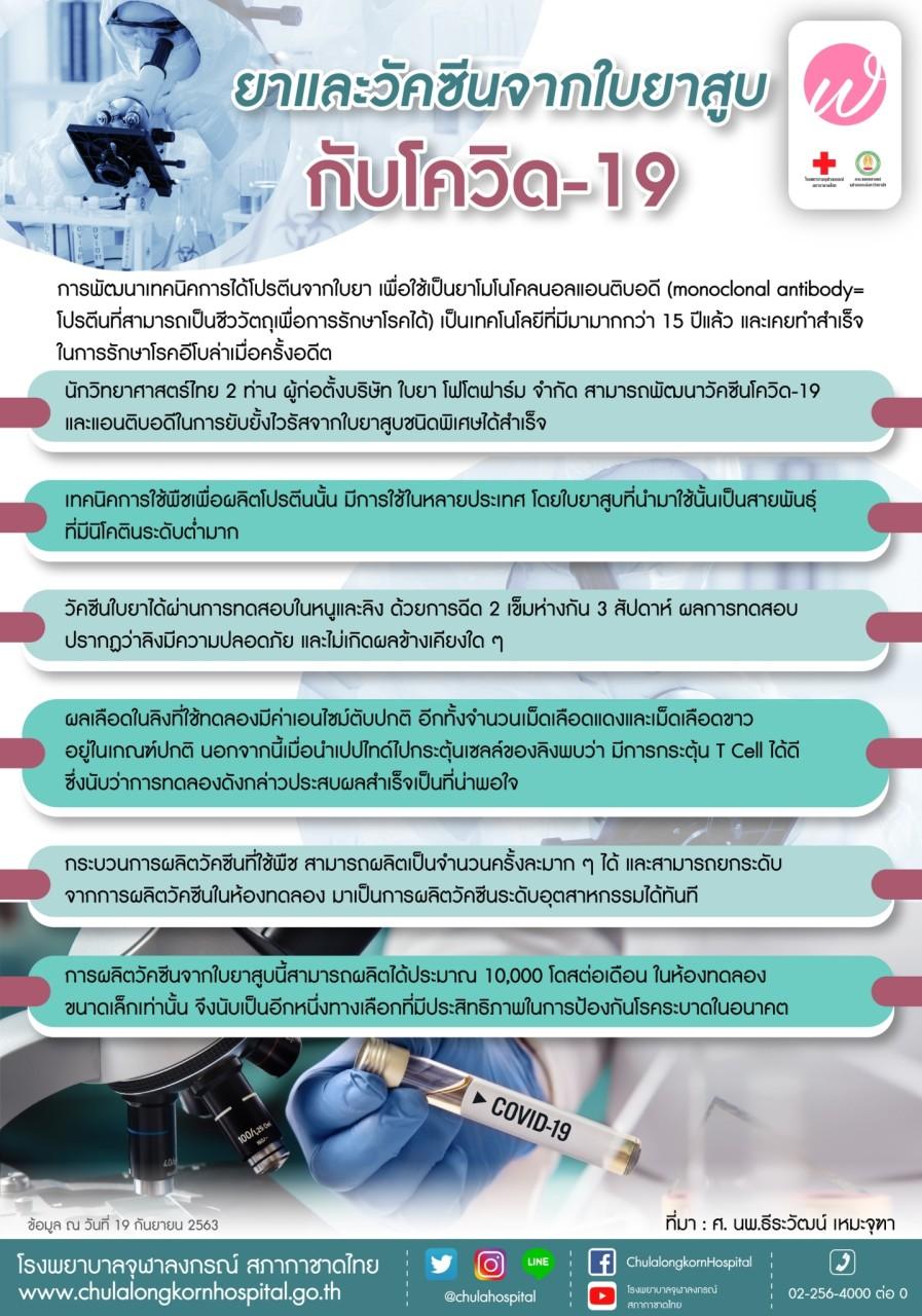 ยาและวัคซีนจากใบยาสูบ กับโควิด-19