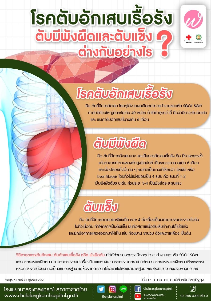 โรคตับอักเสบเรื้อรัง ตับมีพังผืดและตับแข็งต่างกันอย่างไร?