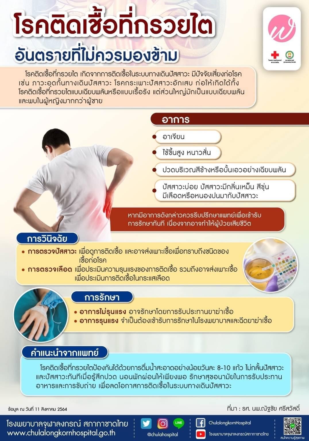 โรคติดเชื้อที่กรวยไตอันตรายที่ไม่ควรมองข้าม